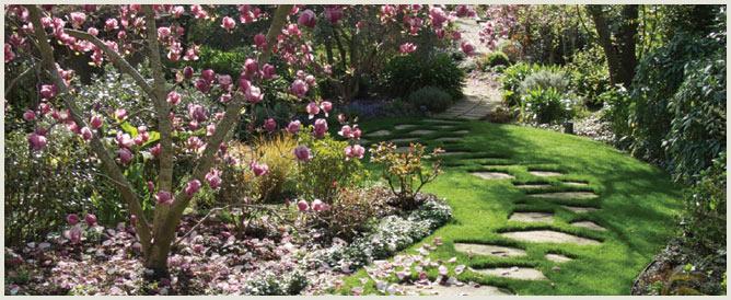 Organic Chester Gardener